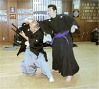 Nidai Soke demonstrates an advanced technique